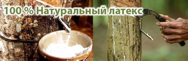 Что такое натуральный латекс?